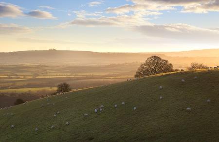 The sun rising a Cotswold landscape near Ilmington, Warwickshire, England  photo