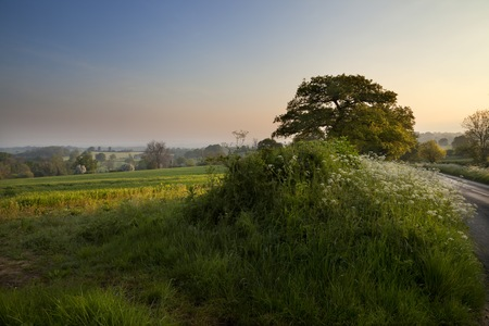 gloucestershire: Landscape near Chipping Campden, Cotswolds, Gloucestershire, England