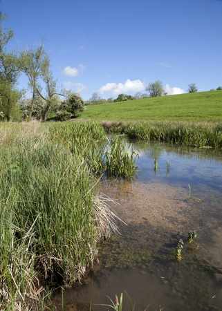 stow: The River Dikler near Stow on the Wold, Gloucestershire, England