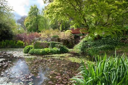 Chinese water garden, England