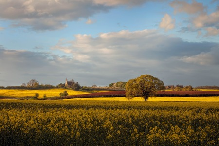 worcestershire: Worcestershire farmland, England Stock Photo