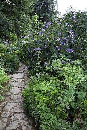 british isles: Pretty cottage garden, Gloucestershire, England. Stock Photo