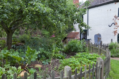 plot: Vegetable plot at a Worcestershire toll house, England