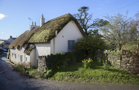 thatched cottage: Thatched cottage at Ringmore, Devon, England