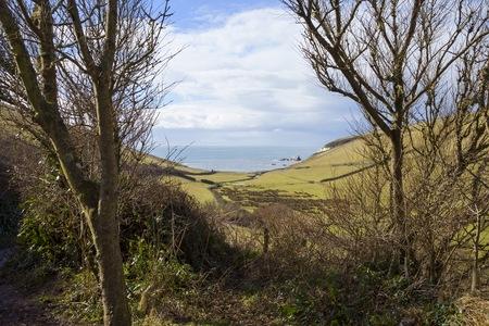 cove: Looking towards Ayrmer Cove, Devon, England