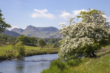 Elterwater looking towards the Langdale Pikes, The Lake District, Cumbria, England Stock Photo
