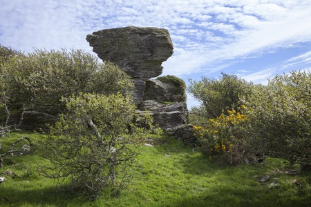 devon: Outcrop near Hazel Tor, Devon, England