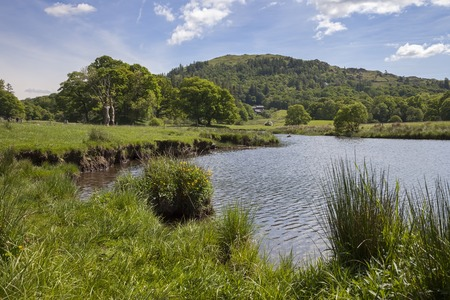 lake district: Elterwater, The Lake District, Cumbria, England