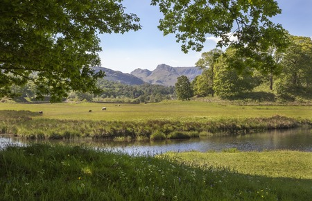 langdale pikes: Elterwater looking towards the Langdale Pikes, The Lake District, Cumbria, England Stock Photo