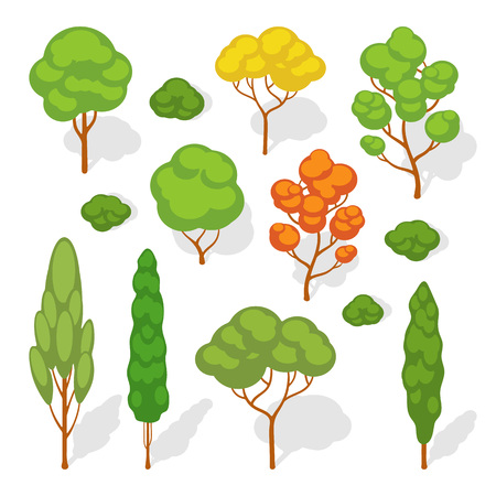 Set of the vector trees. The objects are isolated against the white background and shown from one side