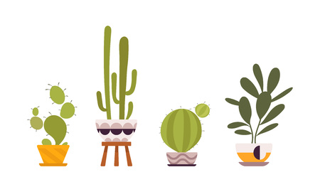 absorb: Set of four green floor plants in retro pots isolated against white background. Cartoon vector flat-style illustration