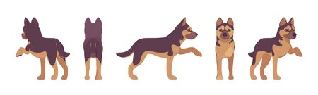 Shepherd dog giving paw. Working breed, family pet, companion for disability assistance, search, rescue, police, military help. Vector flat style cartoon illustration, white background, different view