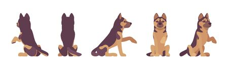 Shepherd dog giving paw and sitting. Working breed, companion for disability assistance, search, rescue, police, military help. Vector flat style cartoon illustration, white background, different view