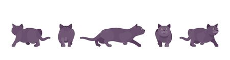 Black Cat sneaking. Active healthy kitten with dark, gray colored fur, cute funny pet, mystic bad luck omen. Vector flat style cartoon illustration isolated on white background, different views