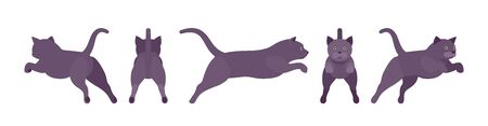 Black Cat jumping. Active healthy kitten with dark, gray colored fur, cute funny pet, mystic bad luck omen. Vector flat style cartoon illustration isolated on white background, different views Illustration