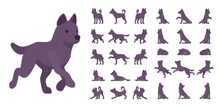 Black dog set. Medium size pet, family companion, active fun, home guarding, farm security, cute agile breed. Vector flat style cartoon illustration isolated, white background, different views, poses Illustration
