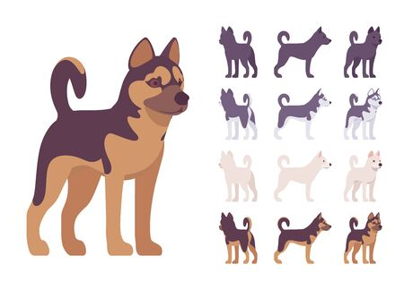 Black, White dog, Husky, Shepherd standing set. Pet, family companion, home guarding, farm or police security breed. Vector flat style cartoon illustration isolated, white background, different views Archivio Fotografico - 132327482