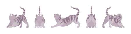 Grey striped Cat stretching. Active healthy kitten with mackerel tabby colored fur, cute funny pet, playful companion. Vector flat style cartoon illustration isolated, white background, different view