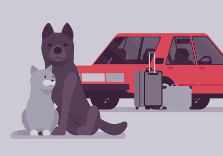 Car travel, road trip with pet cat and dog. Cute puppy and kitten fear auto riding, owners moving on vacation, leaving lonely pets behind or in boarding kennel. Vector illustration