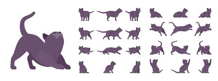 Black Cat set. Active healthy kitten with dark, gray colored fur, cute funny pet, mystic bad luck omen. Vector flat style cartoon illustration isolated on white background, different views and poses