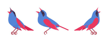 Songbird red and blue set, beautiful singing little musical birds
