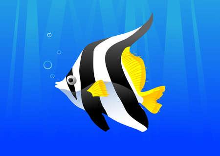 beautiful fish Vector