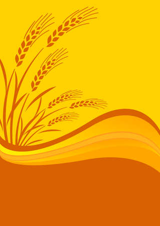 background with cereal crop Illustration