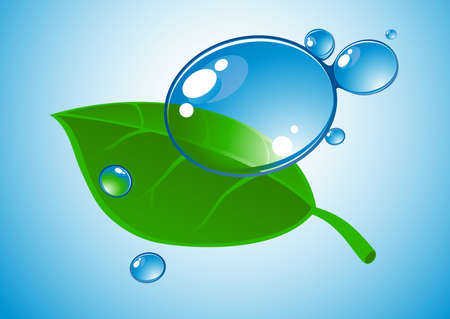 water drop and leaf Stock Vector - 4906962