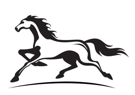 young stallion running