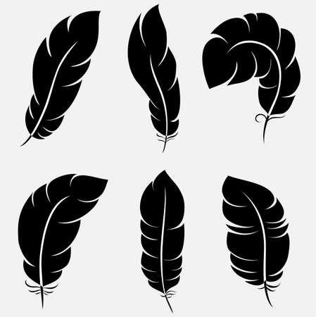 Six elegant feathers for your design and decoration. illustration can be scale to any size and easy to edit.