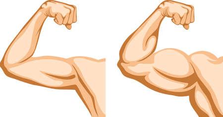 bicep: Antes y despu�s. Dos manos muestra progreso despu�s de gimnasio.