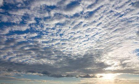 altocumulus: Altocumulus clouds and setting sun