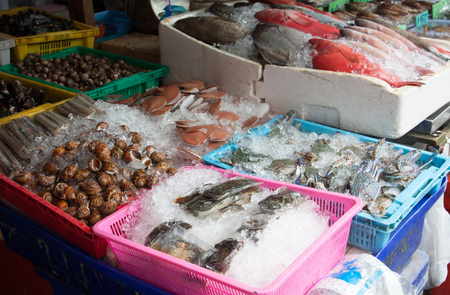 fresh seafood in fish market thailand