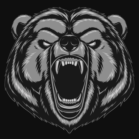 grizzly bear: Vector illustration, Angry bear head mascot Illustration