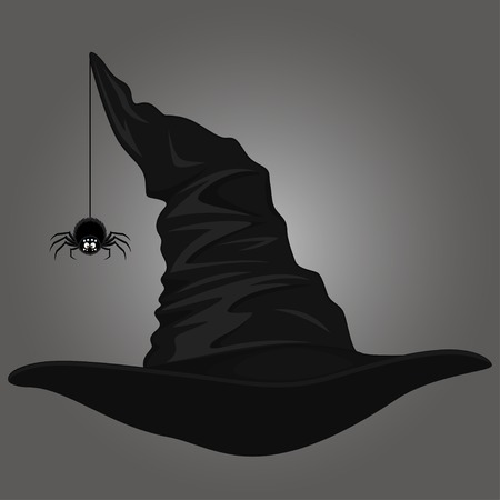 spider web icon: Hat and spider, vector illustration