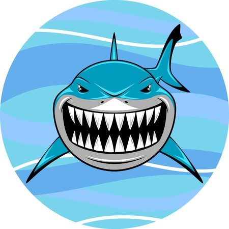 shark: Vector illustration, toothy white shark