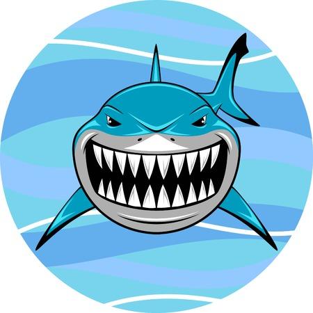 shark teeth: Vector illustration, toothy white shark