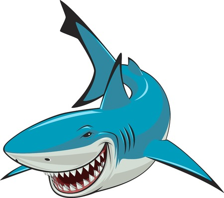 Vector illustration, toothy white shark Vector