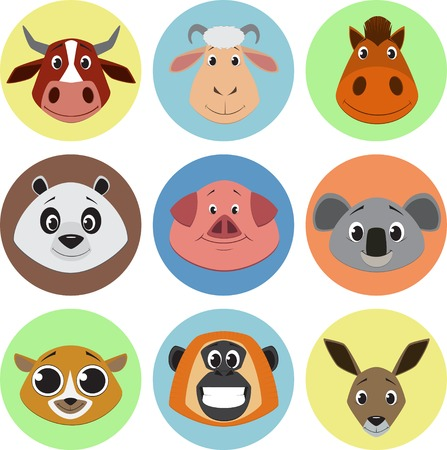 toy bear: Cute colorful exotic animals collection