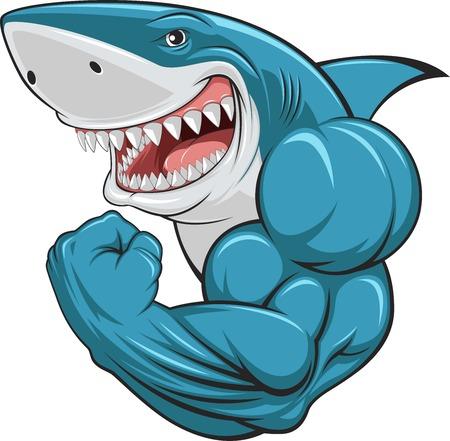 shark cartoon: Ilustración del vector, tiburón blanco dentudo Vectores