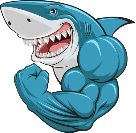 strong: Vector illustration, toothy white shark