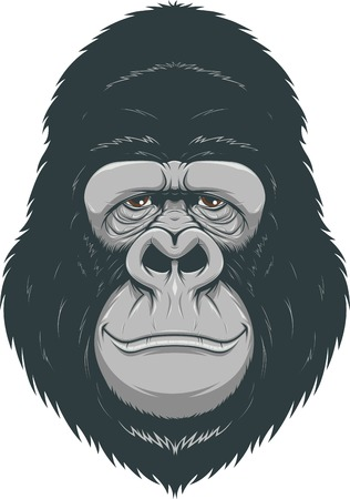 Vector illustration of cheerful monkeys Illustration