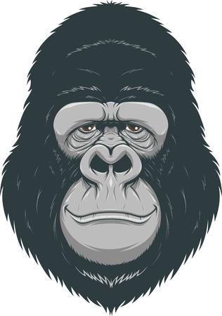 gazing: Vector illustration of cheerful monkeys Illustration