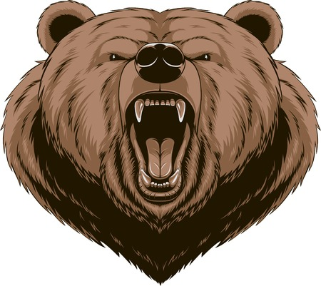 oso caricatura: Ilustraci�n del vector, cabeza de la mascota del oso enojado