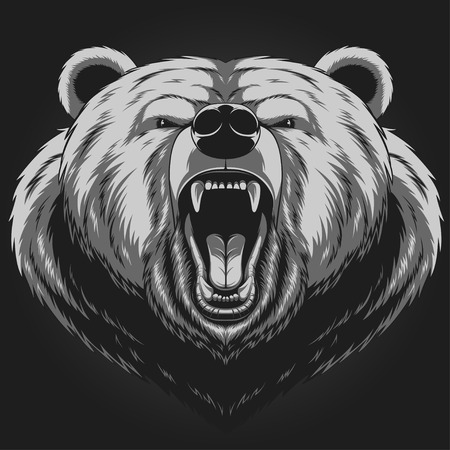 brown: Vector illustration, Angry bear head mascot Illustration