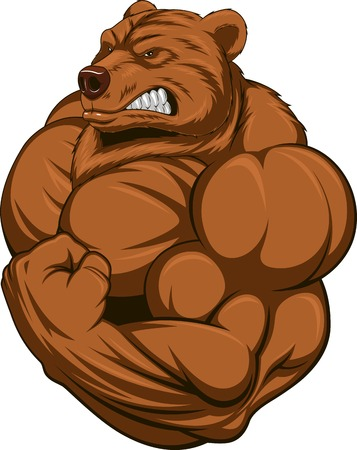 grizzly: Vector illustration d'une forte ours avec gros biceps