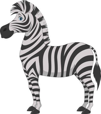 cebra: Ilustraci�n del vector, diversi�n cebra en un fondo blanco