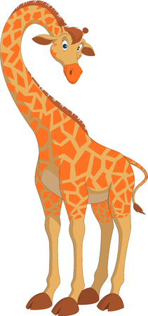 giraffe isolated: Vector illustration, funny hilarious giraffe on a white background Illustration