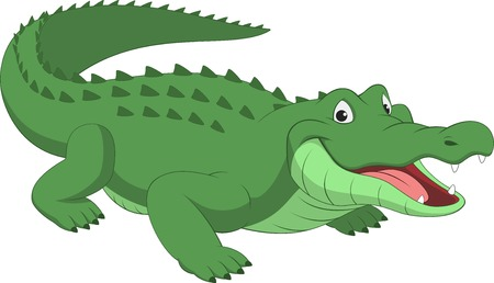 krokodil: Vektor-Illustration, lustige Krokodil auf wei�em Hintergrund