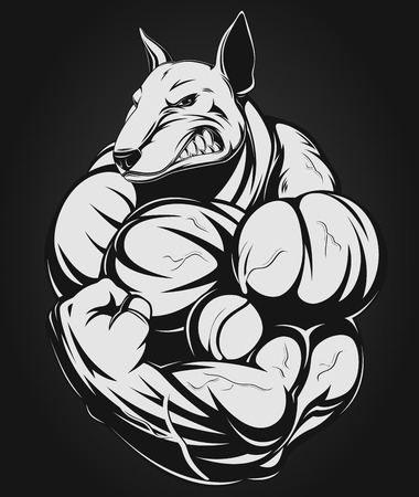 terrier: Vector illustration of a strong  dog with big biceps Illustration